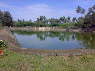 54th ezhichur_nallinakkeswarar_temple8
