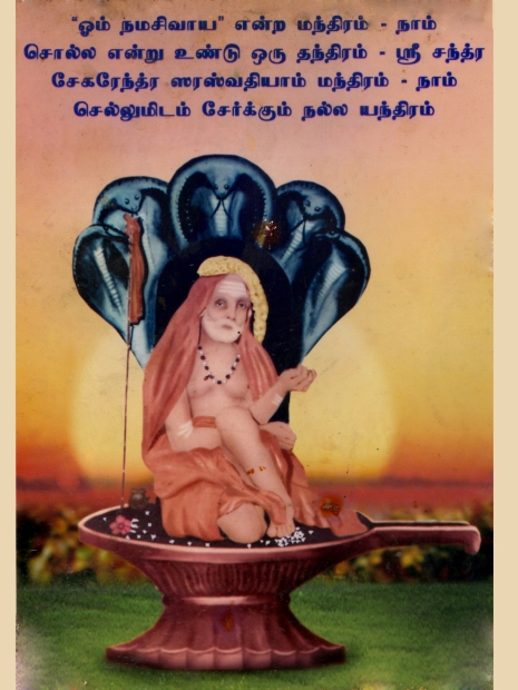 Periyava_Vision_Kerala_Swamiji
