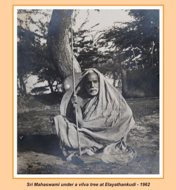 periyava-chronological-203