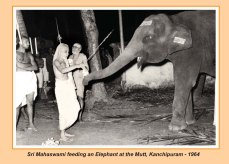 periyava-chronological-227