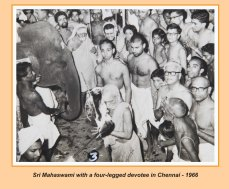 periyava-chronological-276