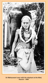 periyava-chronological-344