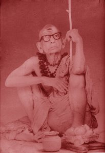Periyava_squating_on_two_legs