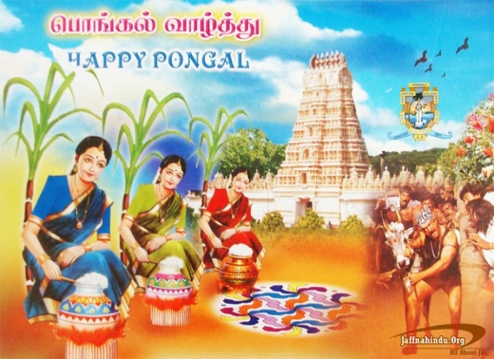 Thai Pongal Greetings.jpg
